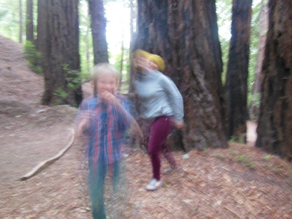 Forest Spirits in Big Sur, CA